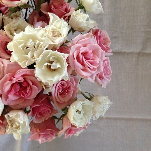 belovedflowers