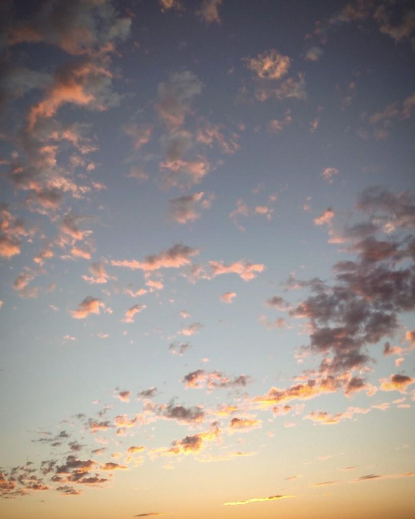 eveninglight4