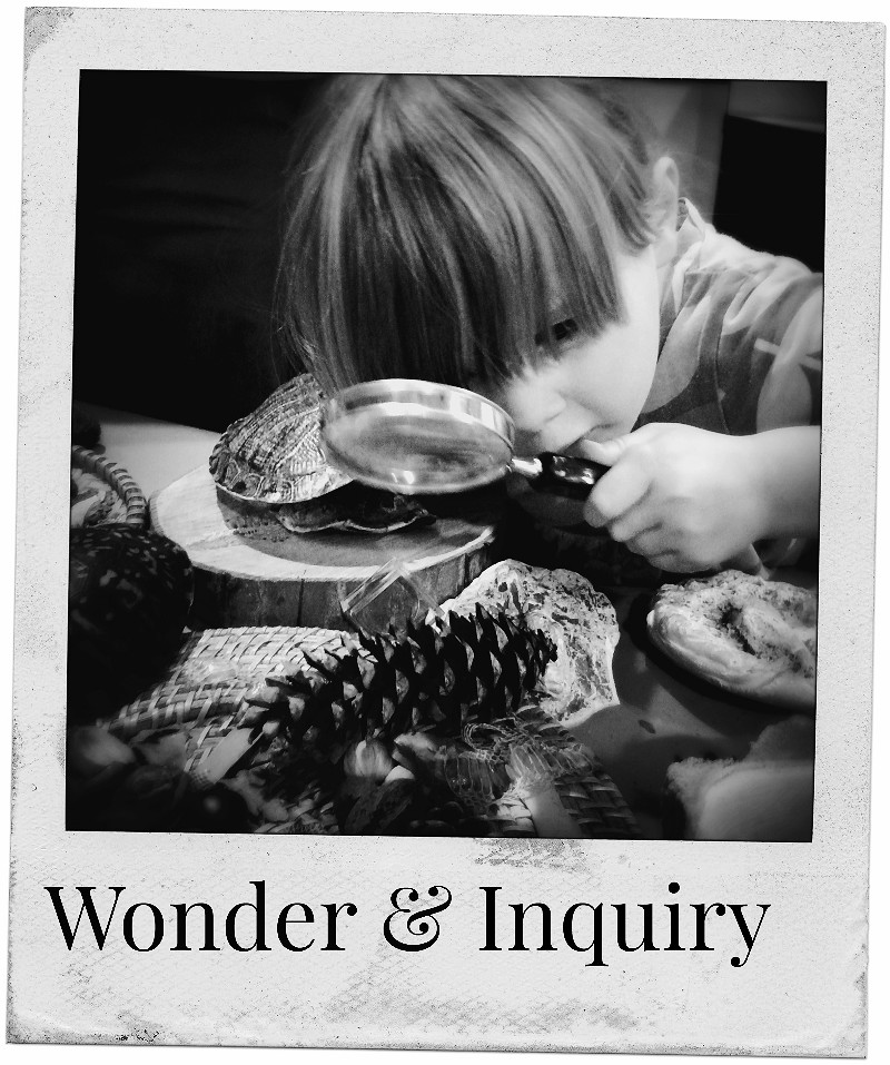 wonder and inquiry